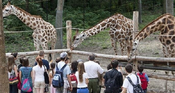 zoo_szeged