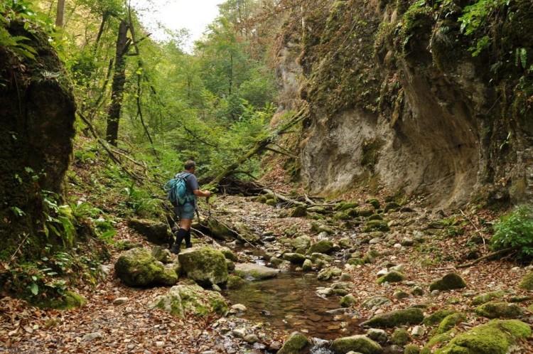 Valea Sighestelului 6