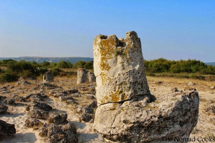 Padurea de piatra de la Varna 11